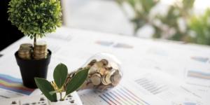 CSR-Berichterstattung: Investoren fordern Nachhaltigkeit